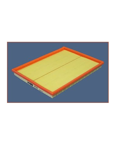 P017 - Filtre à air