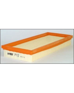 P112 - Filtre à air