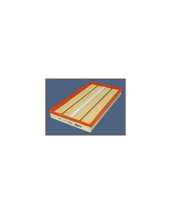 P257 - Filtre à air