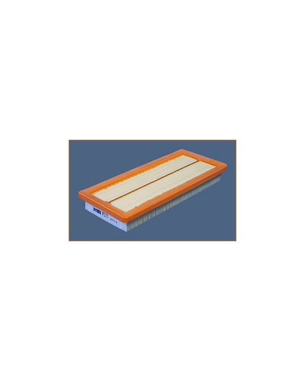 P371 - Filtre à air