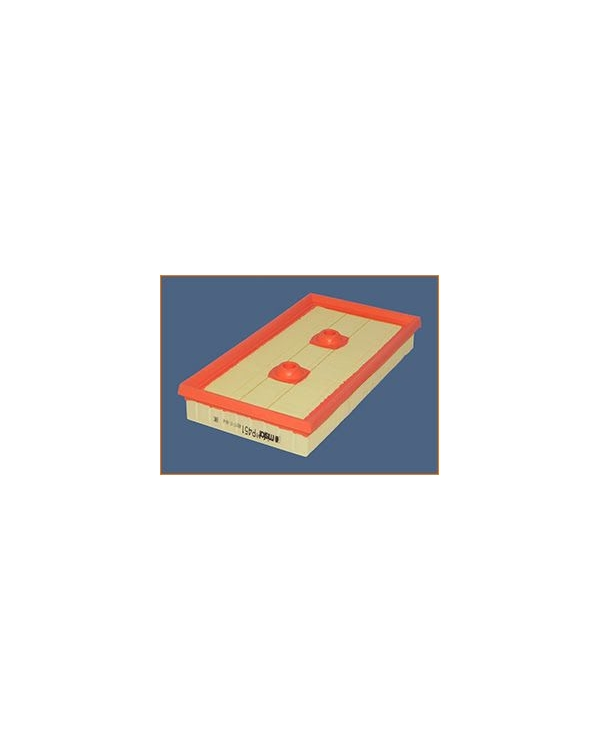 P451 - Filtre à air