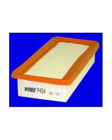 P454 - Filtre à air